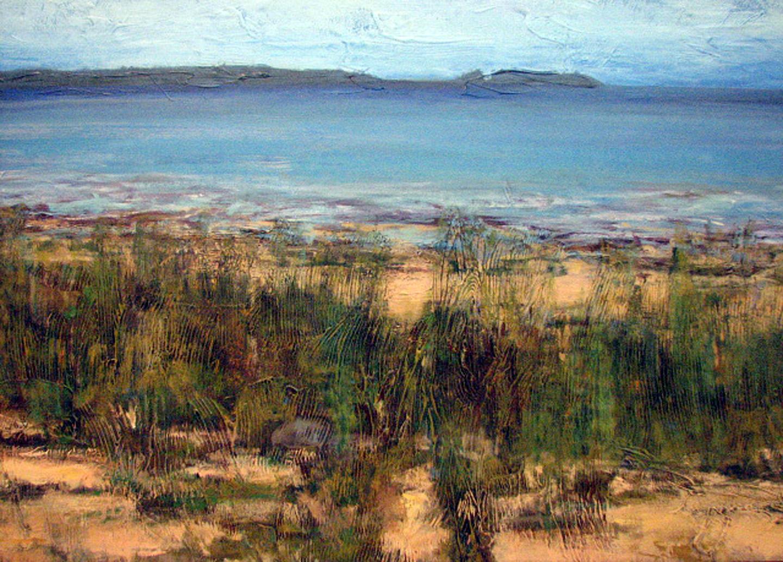Landscapes Gustavo Fares
